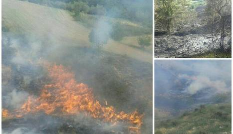 El foc de dimarts va calcinar 4,5 hectàrees.