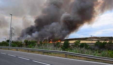 L'incendi que va calcinar vuit hectàrees dimarts a la  Floresta.