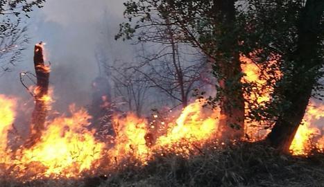 Un altre foc de vegetació va afectar ahir el parc de la Mitjana.