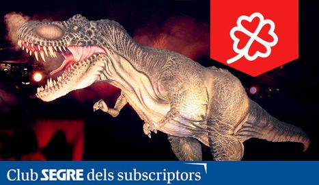 Els dinosaures són els grans protagonistes de l'exposició.