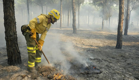 Bombers treballen en l'incendi declarat al terme municipal de Moguer.