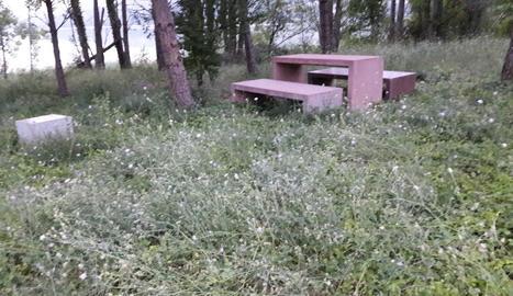 La zona de pícnic de l'àrea de Cellers, inutilitzada per les herbes.