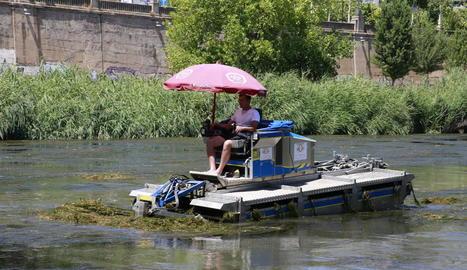 La màquina amfíbia que talla les algues que proliferen al Segre al seu pas per la capital.