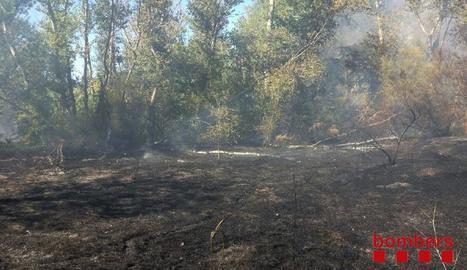 Incendi a la Mitjana de Lleida