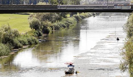 Una màquina amfíbia retira aquests dies les algues del riu a l'altura del pont Vell.