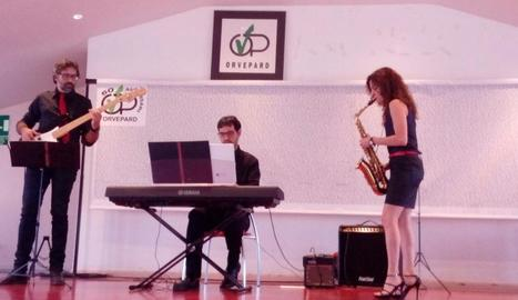 Una actuació del trio lleidatà Red Notes, de baix, teclats i saxo.