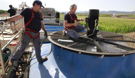 Tècnics treballant ahir en l'obertura per etapes de la planta de purins de Vag, a Juneda.