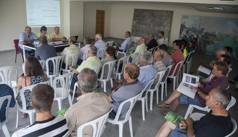 Unió de Pagesos va organitzar ahir una jornada a Tàrrega sobre l'ametller de regadiu.