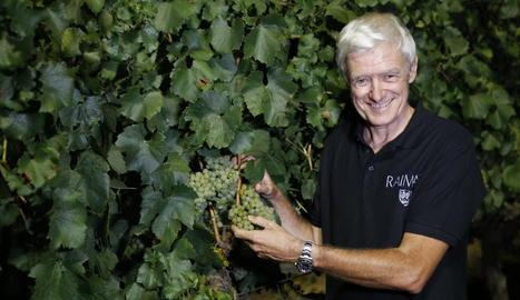 Xavier Farré, director de viticultura de Raimat, amb el primer raïm recollit ahir a la nit.