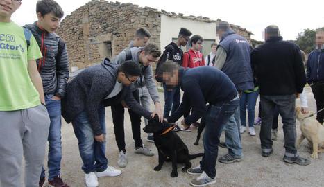 Usuaris de Torreblanca i alumnes d'Els Planells intercanviant experiències l'abril passat.