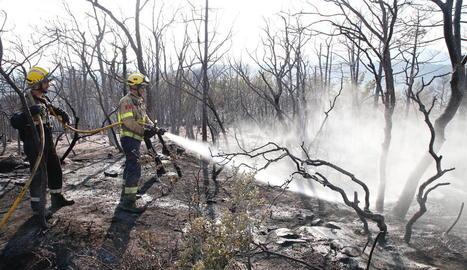 Bombers treballant ahir a la tarda en l'incendi de Montargull, a Artesa de Segre.