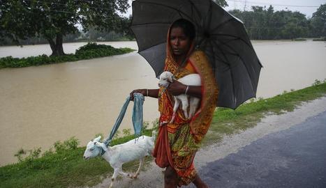 Més de 100.000 desplaçats per les inundacions al Nepal, amb 53