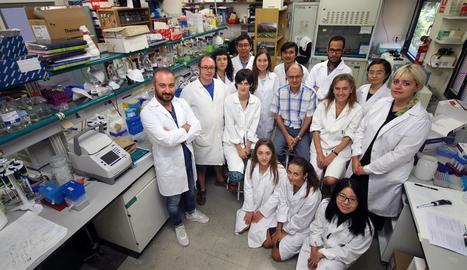 El grup d'investigació que lidera el professor Paul Christou, ahir al laboratori a la facultat d'Agrònoms.