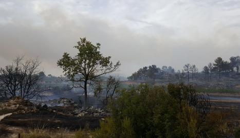 Una imatge de l'incendi
