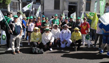 Els manifestants de Lleida, entre ells diversos apicultors, ahir a Madrid.