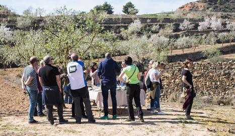 Un grup de turistes visitant camps d'ametllers.