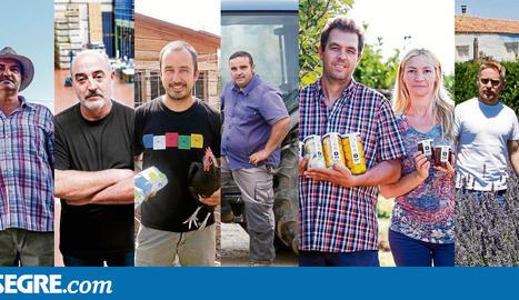 La crisi de la fruita obliga l'Horta de Lleida a reconvertir-se