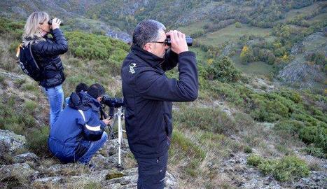 Quatre persones observen la brama del cérvol al Pallars.