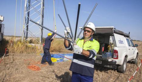 Una de les proteccions instal·lades a la línia elèctrica entre Tàrrega i Mollerussa.
