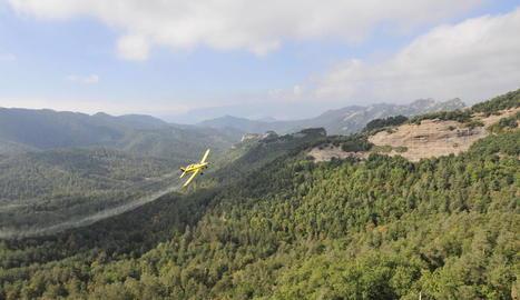 Imatge d'una avioneta fumigant per combatre la processionària en un bosc de l'Alt Urgell.