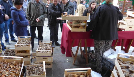 El Mercat de la Fira del Bolet a la plaça Major.