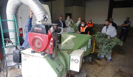 Els Mossos han trobat plantes de marihuana en un magatzem de la Bordeta.