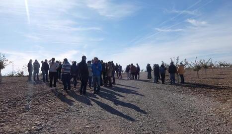 Unes vuitanta persones van participar en la jornada tècnica sobre el cultiu del pistatxo.