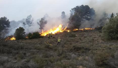 Efectius treballant per sufocar les flames a l'incendi de la Segarra.