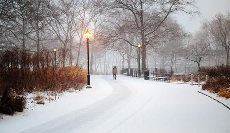 Una intensa tempesta de neu castiga la costa de Nova York.