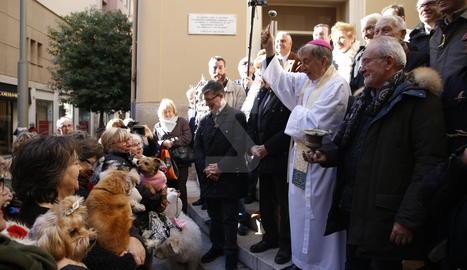 La benedicció dels animals a l'església de la Sang de Lleida.