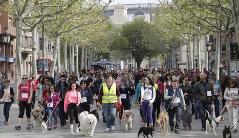 Una desfilada de mascotes a Lleida