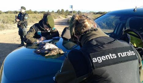 Manel Vidal i Pau Simarro, ahir a la seu d'Agricultura. A la dreta, inspecció de caça dels Agents Rurals a Mas de Melons.