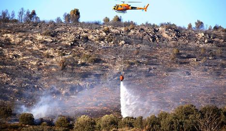 Fins a tretze dotacions de Bombers van treballar ahir en l'incendi forestal de Castelló de Farfanya.