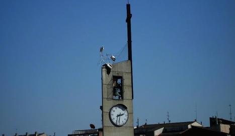 La cigonya morta i dos de posades sobre el campanar.