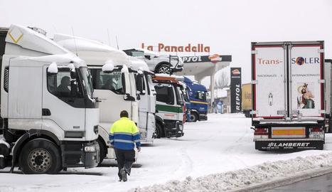 Imatge dels camions que estaven estacionats ahir a la Panadella.