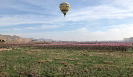El primer dels vols amb globus sobre els fruiters florits d'Aitona