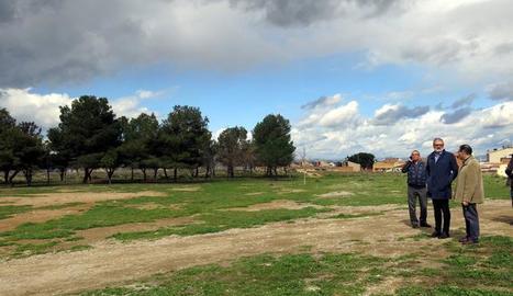 La zona verda al carrec Camp on està prevista la construcció d'un bosc urbà.