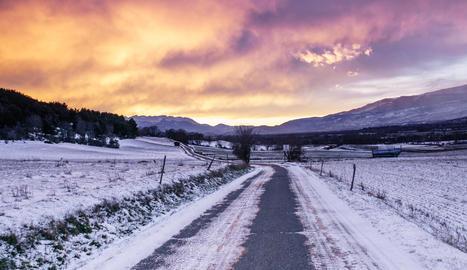 Passeig en solitari, la fotografia guanyadora de Rosa Farré.