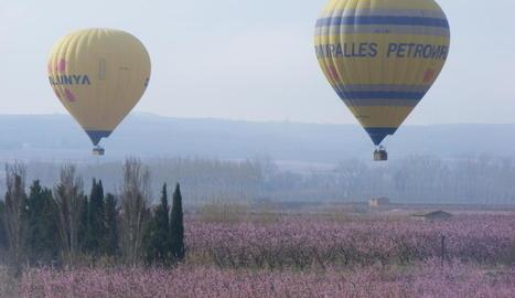 Visites en globus als camps florits d'Aitona.