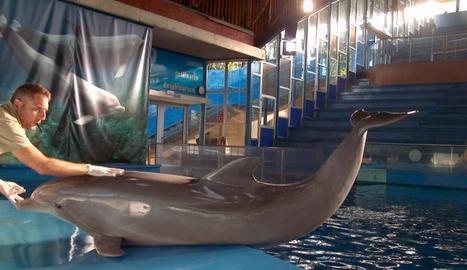 La vida als zoos, a TV3