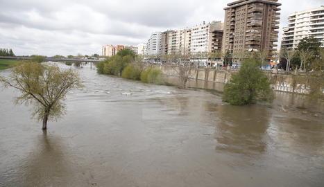 El riu Segre al seu pas per la ciutat de Lleida aquest dijous al matí.