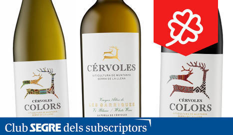 Lot de vi de Cérvoles Celler.