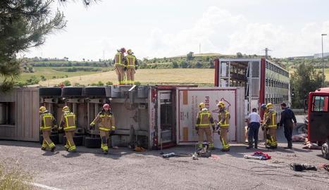 Diversos efectius dels bombers, ahir, treballant al costat del camió bolcat.