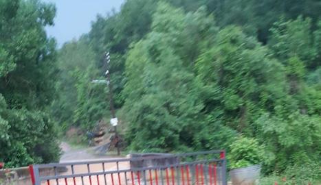 Operaris treballen amb els Bombers per retirar arbres.