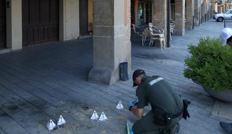 Un rural inspecciona la destrucció de nius a Balaguer.