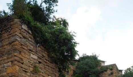 Un tram de la muralla de Solsdevila on s'ha millorat l'entorn.