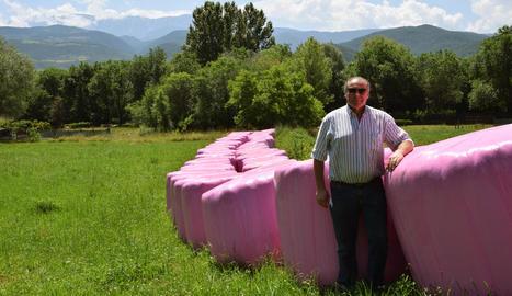 Josep Armengol mostra les bales de color rosa, a peu de l'N-260 a la Seu d'Urgell.