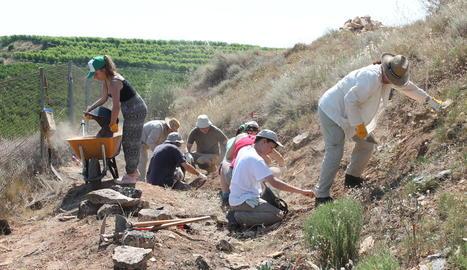 El grup d'inscrits treballava ahir al jaciment d'Aitona.