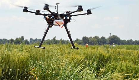 Imatge d'un dron utilitzat en la investigació.