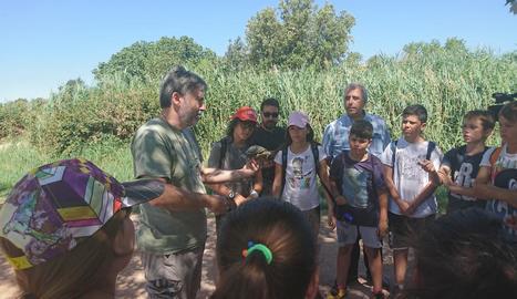 Nens i joves de la Setmana Natural van alliberar ahir les tortugues.